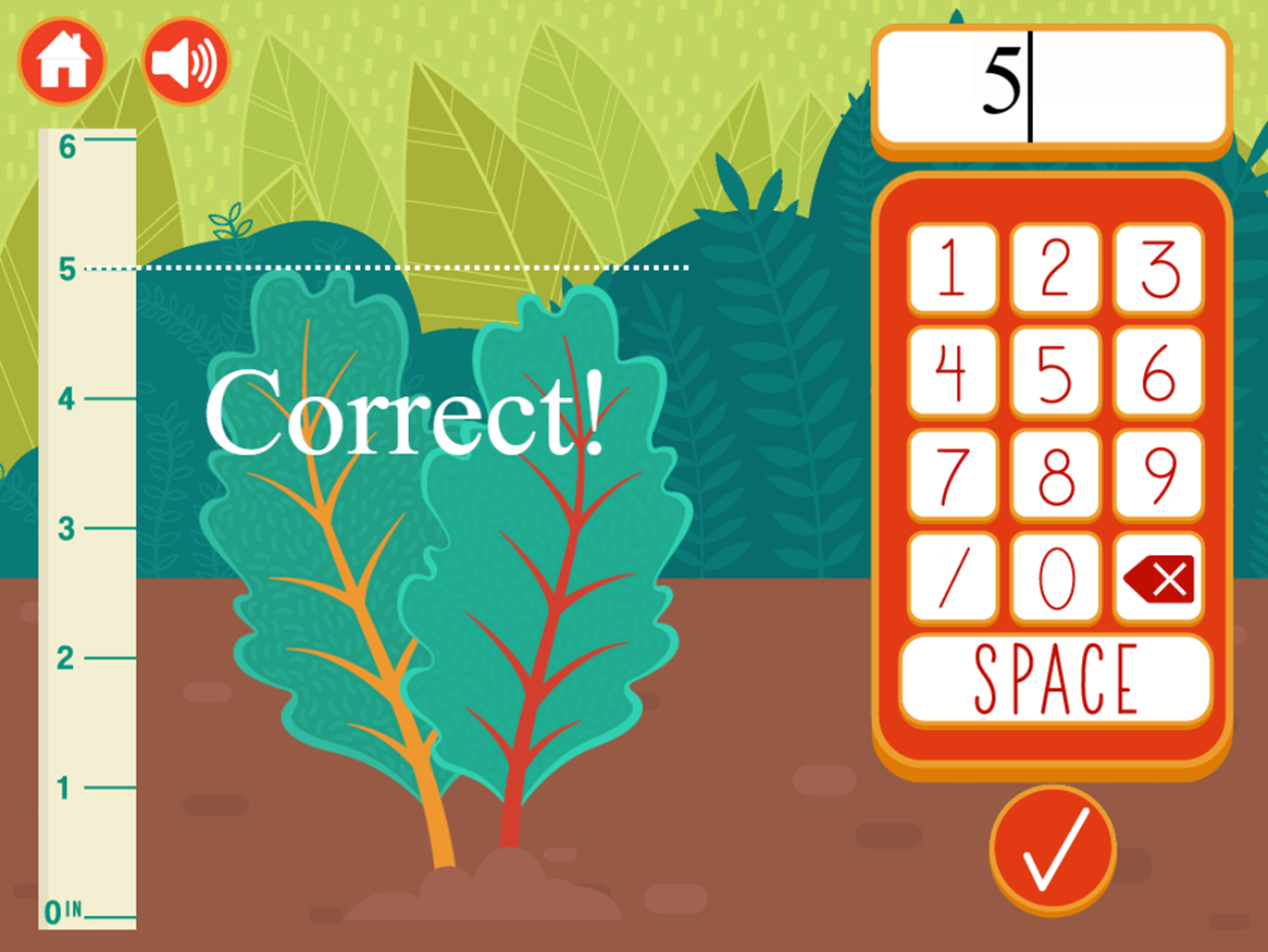 Strolling With My Gnomies a Measurement Game Correct Answer Screenshot.
