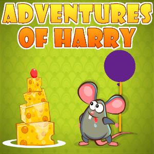 adventures of harry.