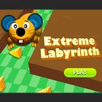 Extreme Labyrinth.