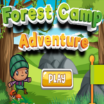 Forest Camp Adventure.