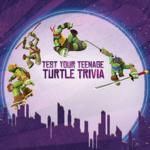 TMNT Test Your Teenage Turtle Trivia.