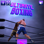 Ultimate Boxing.